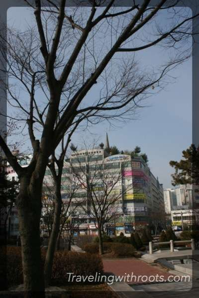 Normal Korean buildings